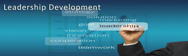 Leadership Development Consulting and Services